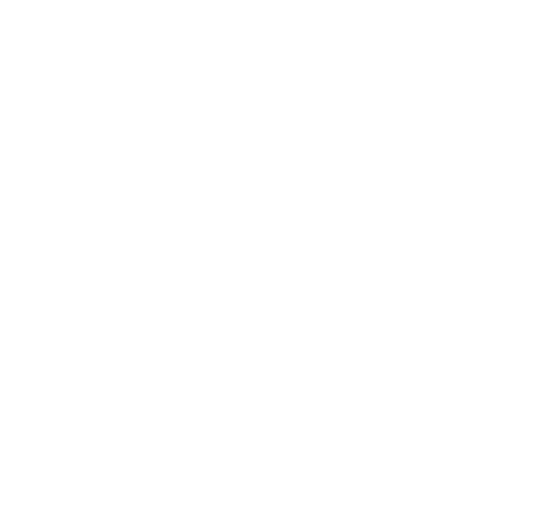 certificato_ISO_18295